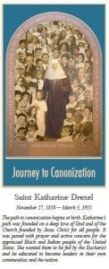 Journey to Canonization Cover